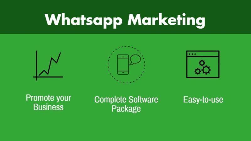 whatsapp auto tool